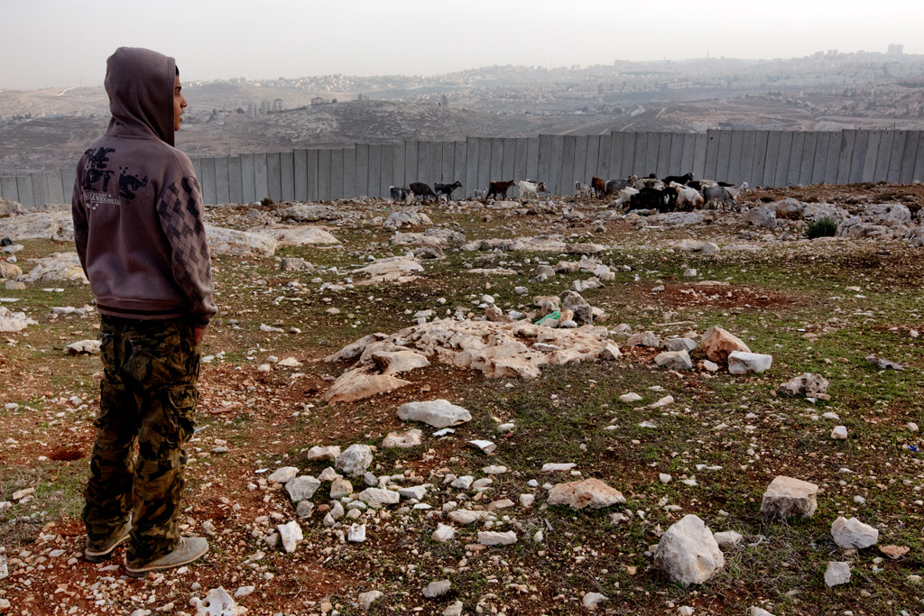 A young shepherd tends his flock of sheep and goats at the imposed barrier of Palestinian lands. Dec. 28, 2013. West Bank, Palestinian Territories. (Photo by Gabriel Romero/Alexia Foundation ©2014)