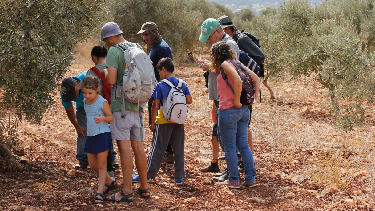 Participants in an inaugural Bedouin tracking workshop, Salameh, Upper Galilee, September 2015. By Tal Shofman-Schejter.